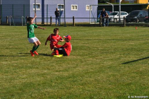 as-andolsheim-u-11-b-coupe-1-er-tour-29
