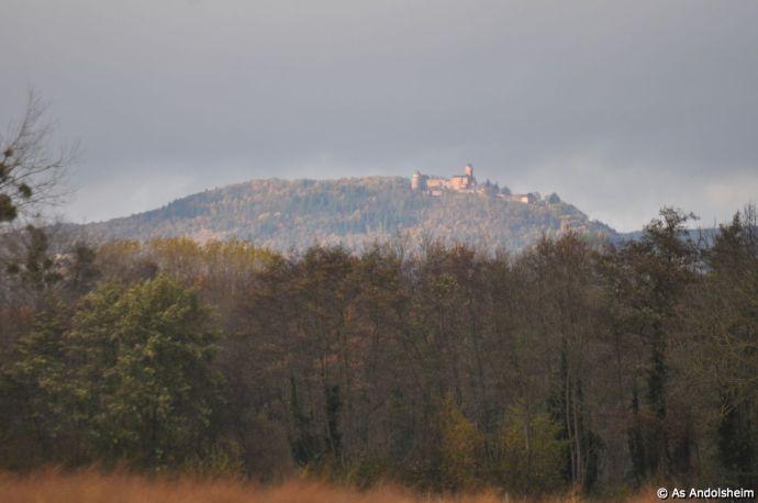 as-andolsheim-u-11-b-vs-jebsheim79