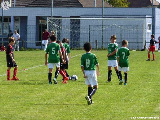 AS Andolsheim U 11 B vs Avenir Vauban 2018 00011