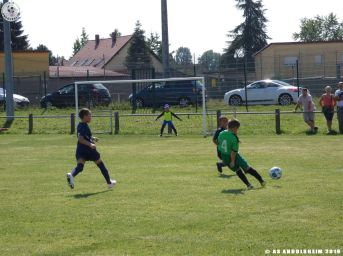 AS Andolsheim U 11 Amical vs FC Horbourg 310819 00040