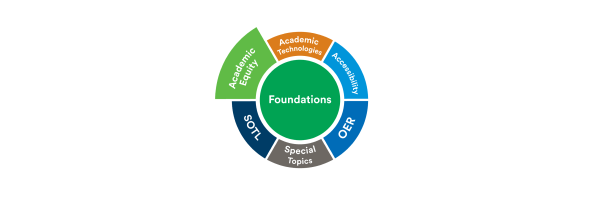 Essentials of Being a Scholarly Teacher: Academic Equity