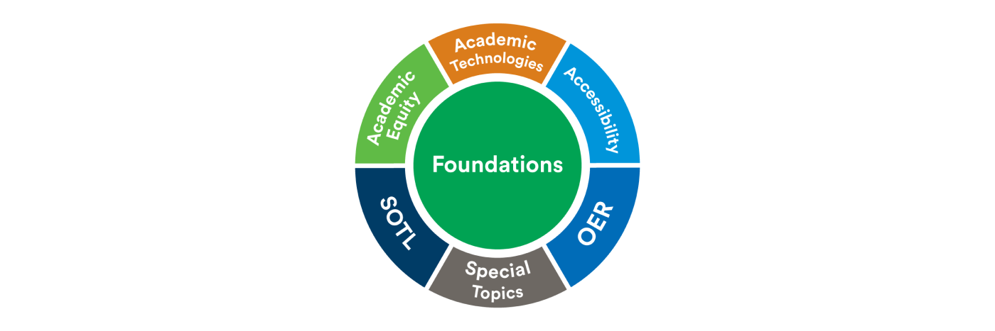 Essentials of Being a Scholarly Teacher: Foundations