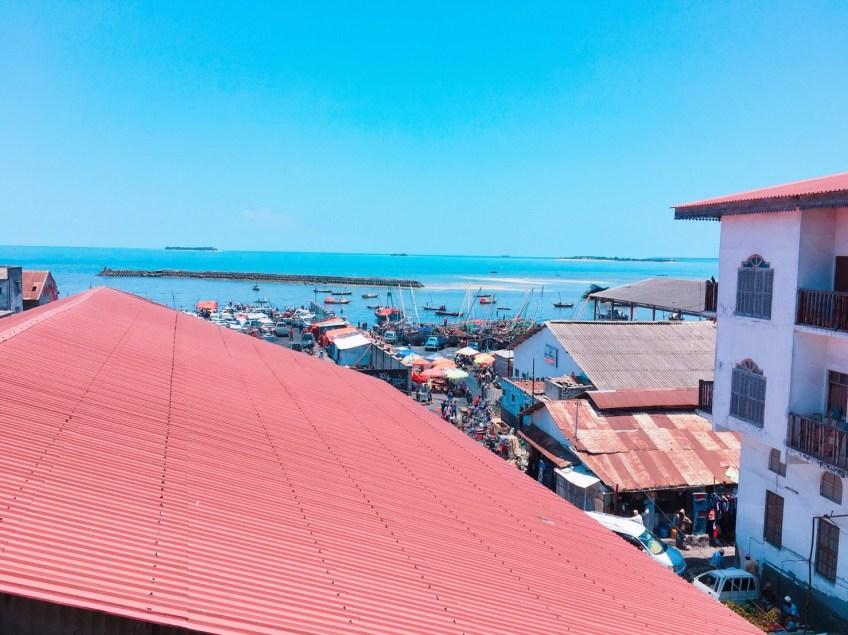 「タンザニアってどんなところ?」~東アフリカのリゾート、ザンジバル特集②~