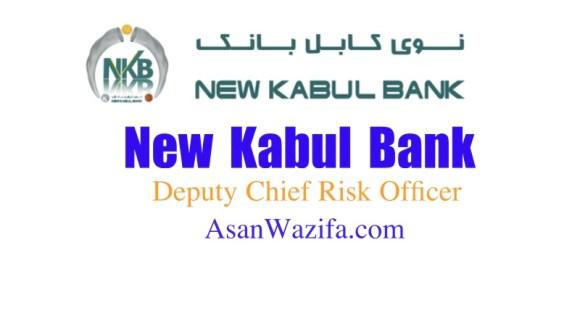 New Kabul Bank ( Deputy Chief Risk Officer )