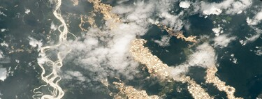 "NASA shows the ""rivers of gold"" in the Amazon seen from space: a shocking picture of illegal mining"