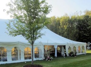This is a wedding tent at Pathways to Perennials. If you don't have a yard and want a tent wedding you can do it in the gardens here.