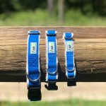 Hemp Blue Dog Collars