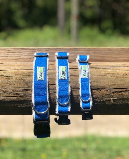 Asatre Hemp Dog Collars - Blue