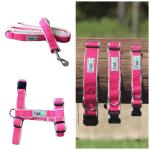 Asatre Hemp Dog Harness Collar Leash Set