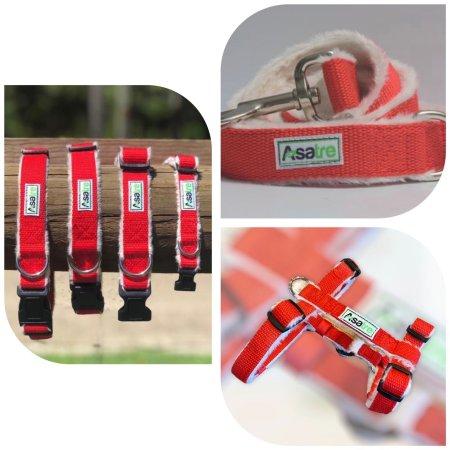 Harness Leash Collar Set - Red