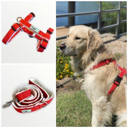 Asatre Hemp Dog Harness and Leash Set