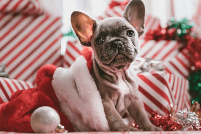 5-ways-to-give-back-to-your-customers-this-holiday-season