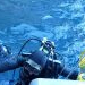 derniere-plongee-2010-14