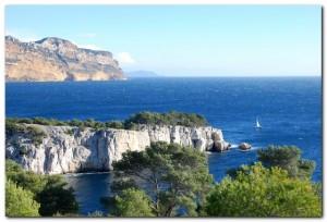 Pointe Cacau Cassis