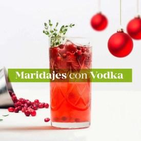 maridajes con vodka guru of spirits