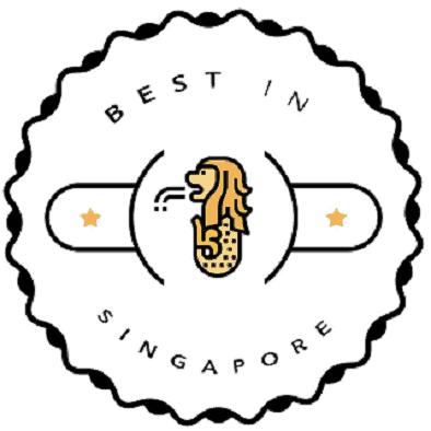 audit company singapore