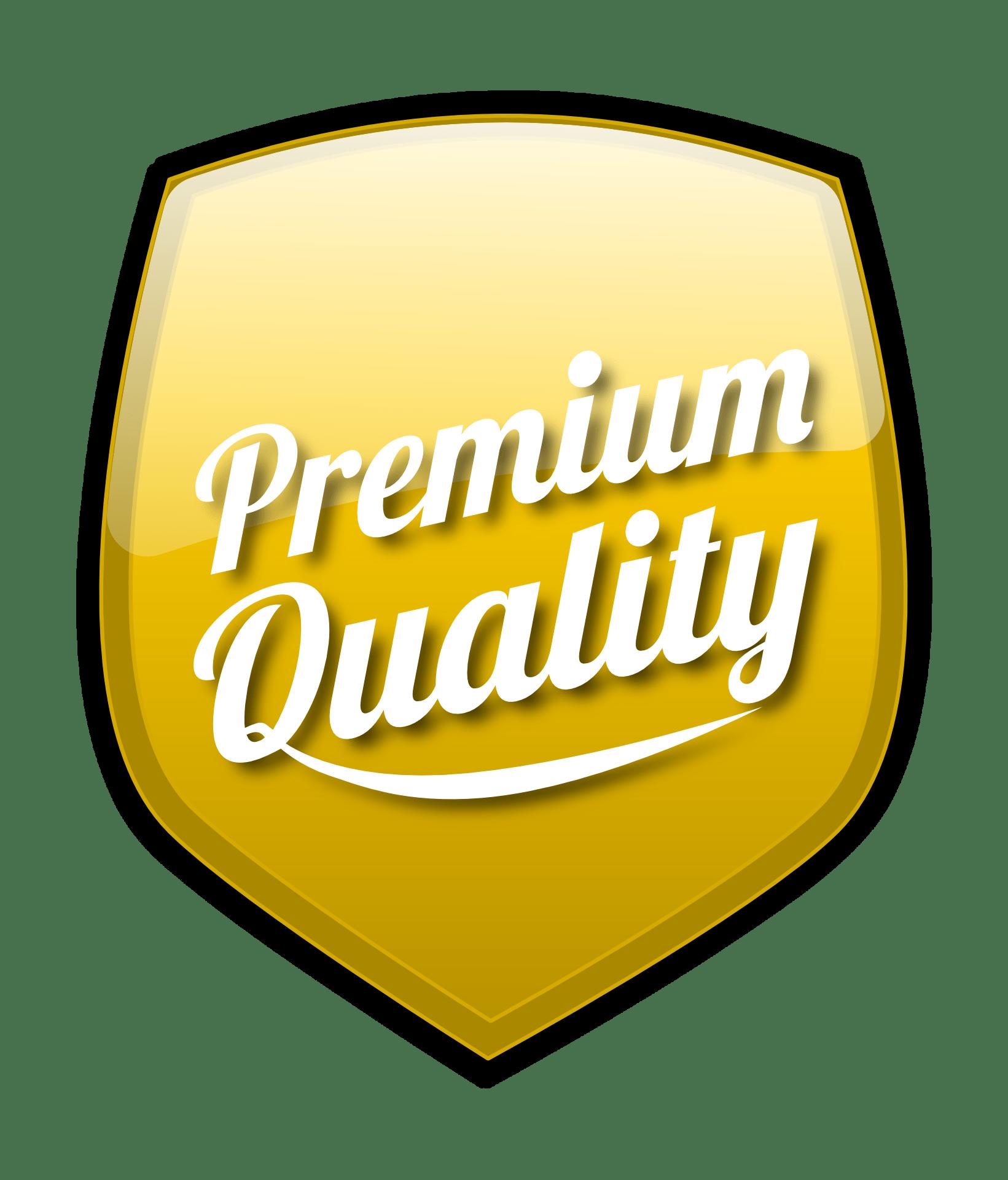 High Quality USACO Curriculum