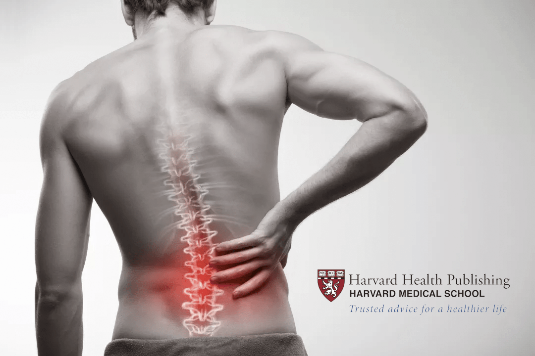 Chiropractic Treatment For Low Back Pain  Brookfield Chiropractor