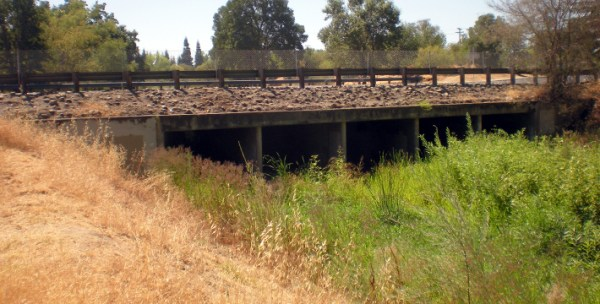 Dry Creek Greenway MultiUse Trail Project EIR and CE