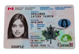 Canada Green Card | Canadian Permanent Resident Card