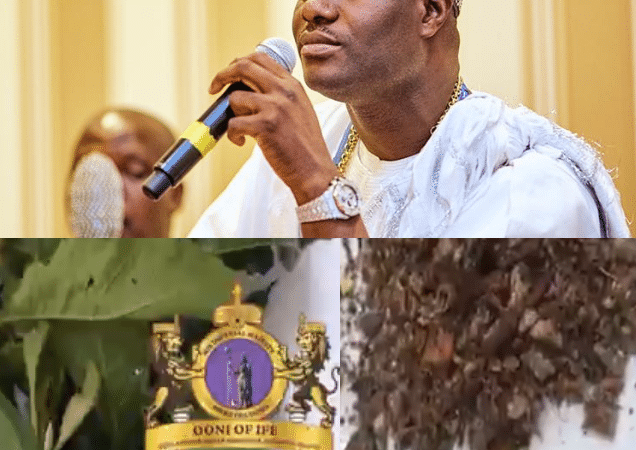 """""""Coronavirus solution. It is real and it works"""" Ooni of Ife reveals herbs he says can be used to treat coronavirus 1"""