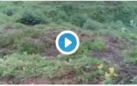ENDTIME: Rwanda Community in shock as piece of land is seen moving (Video) 1