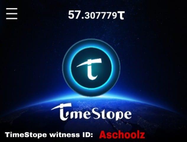 TimeStope witness ID
