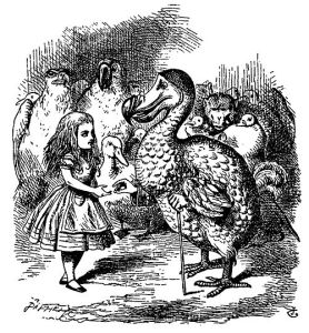 Alice meets dodo