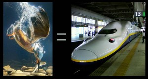 kingfisher and bullet train