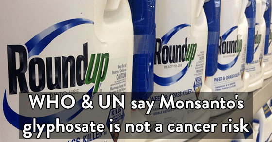 Glyphosate is not a cancer risk