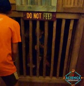 Ark Encounter No feeding