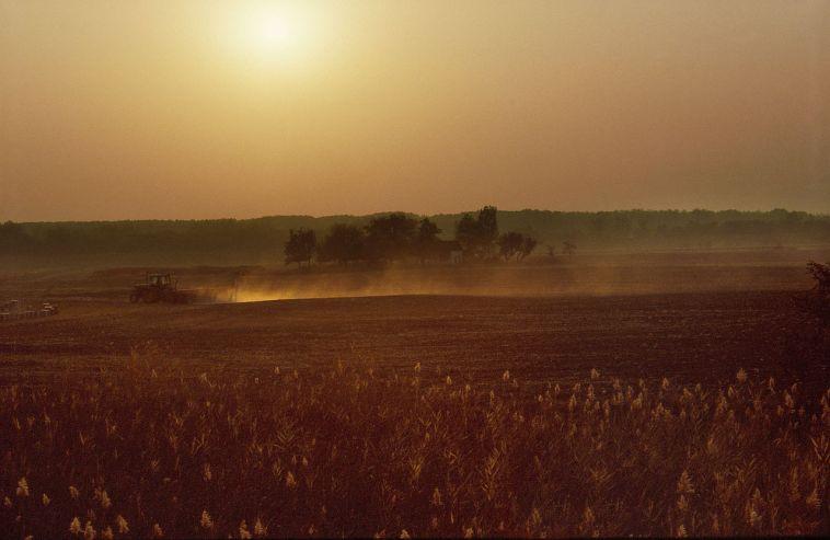 1982 Farm near Hódmezővásárhely - Near to Elderberry Farm, Ploughing in autumn