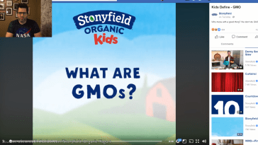 What are GMOs Stonyfield Organic Yogurt