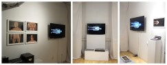 Installation view of Evie Leder: The Objects, 2014