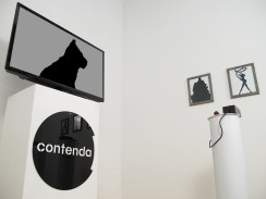 Installation view of Tim Roseborough's Contenda at ASC Projects, 2013