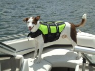 Jack stands proudly on the bow of the speed boat, sporting his neon green life vest.