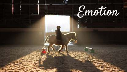 L'équitation_Page_4