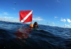 Quand la DGCCRF se penche sur les équipements de protection individuelle pour la plongée
