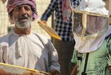 Photo of النَّحّال عامر الحاتمي يبدأ جَنْيَ عسل الطّلح بولاية الرستاق..