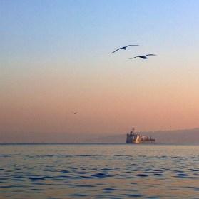 Passeio pelo Bósforo Istambul entre dois continentes 6