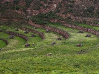 Vale Sagrado dos Incas Moray 6