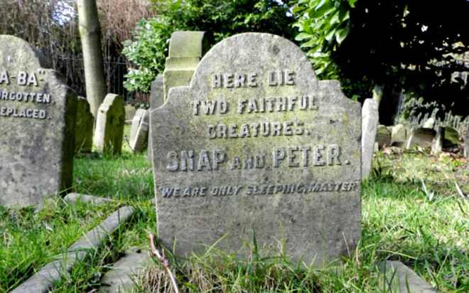 pet cemetery hyde park
