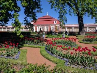 Petergof Russia Petersburgo monplaisir