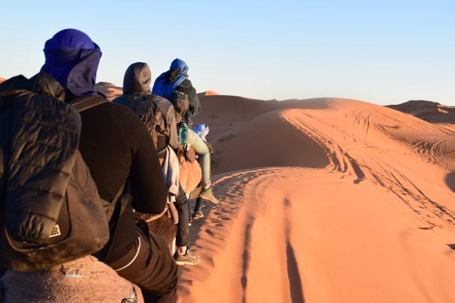 Saara Marrocos passeio nos camelos 1
