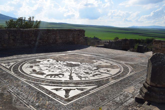 Volubilis ruinas romanas Marrocos casa de Orfeu
