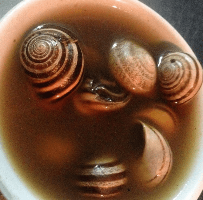 Marrocos comida típica provar sopa caracois