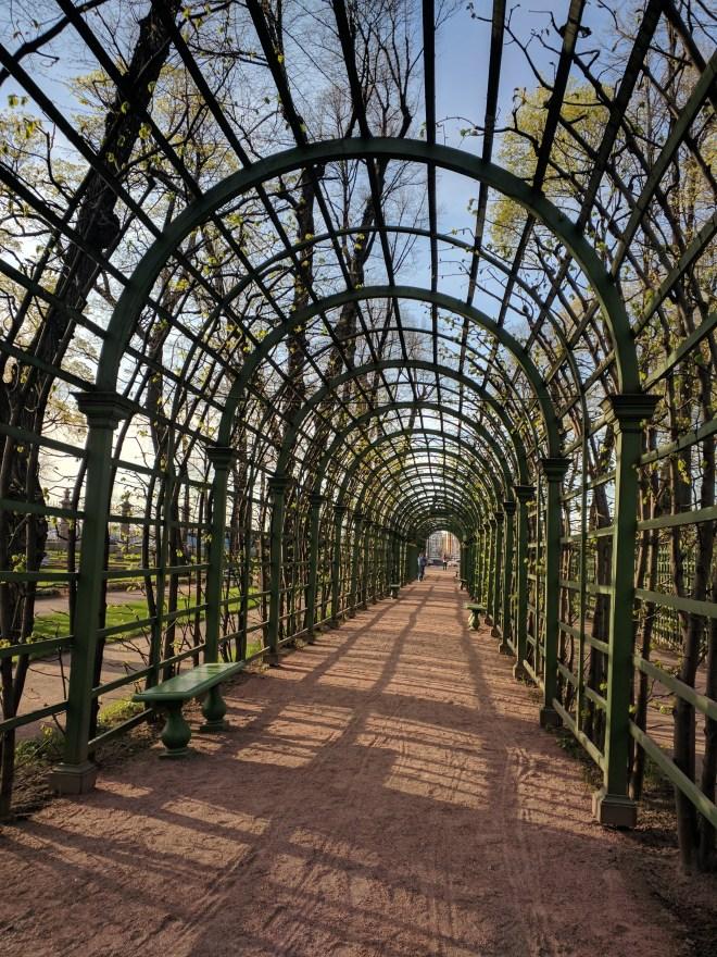 Russia Petersburgo parques jardim de verão grades 2