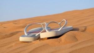 sandals-flip-flops-footwear-beach-shoes-leisure