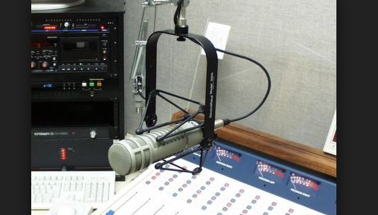 Microphone and radio station
