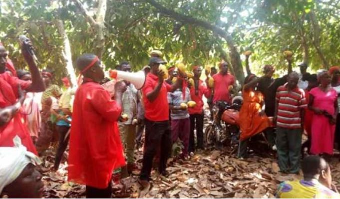 The farmers protested to register their displeasure over the sale of cocoa farmlands